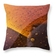 Signs-3 Throw Pillow