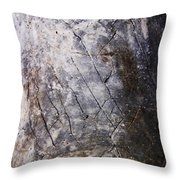 Signs-9 Throw Pillow