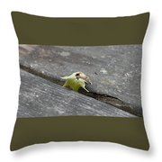 Signs Of Autumn Throw Pillow