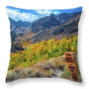 Signs Of Grandeur  Throw Pillow