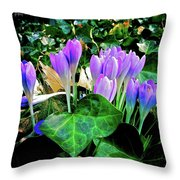 Signs Of Spring I Throw Pillow