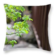 Signs Of Spring In American Fork Canyon Utah Throw Pillow