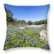 Signs Of Spring In Texas Throw Pillow