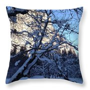 Silence In The Trees Yosemite Throw Pillow