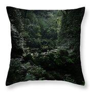 Silence Is Round Me   - Mokulehua Throw Pillow