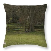 Silent Afternoon Throw Pillow