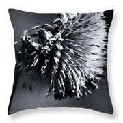 Silent Bow Throw Pillow
