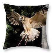 Silent Flight Throw Pillow