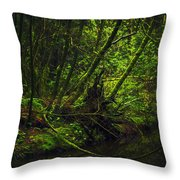 Silent Forest Throw Pillow by Stuart Deacon