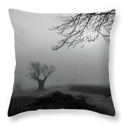 Silent Haze Throw Pillow
