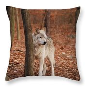 Silent One Throw Pillow