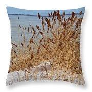 Silent Prisoner Throw Pillow