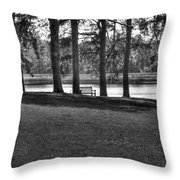 Silent Solitude  Throw Pillow by Mark Six