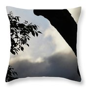 Silhouette Against The Sky Throw Pillow