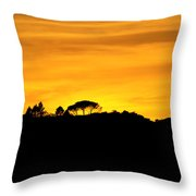 Silhouette Di Un Panorama Al Tramonto Throw Pillow