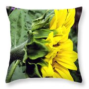 Silhouette Of A Sunflower Throw Pillow