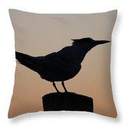 Silhouette Of Bird Throw Pillow
