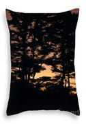 Silhouette Of Forest  Throw Pillow
