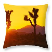 Silhouette Of Joshua Trees Yucca Throw Pillow
