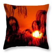 Silhouette Of Papyrus At Sunset Throw Pillow