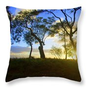 Silhouette Of Trees Throw Pillow