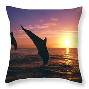 Silhouette Of Two Bottlenose Dolphins Throw Pillow