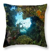 Silhouette Through Coral Throw Pillow
