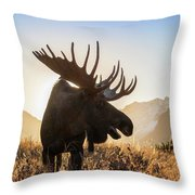 Silhouetted By The Sunrise Throw Pillow