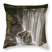 Silk Cascade Throw Pillow