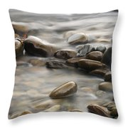 Silk River Throw Pillow