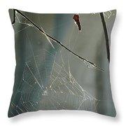 Silken Home Throw Pillow