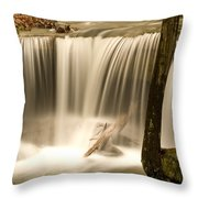 Silken Waterfall Throw Pillow