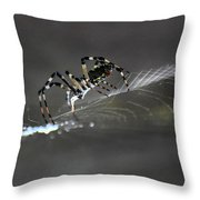 Silks Throw Pillow