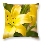 Silky Lilies Throw Pillow