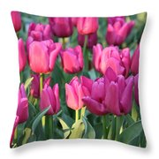 Silky Pink Tulips Throw Pillow