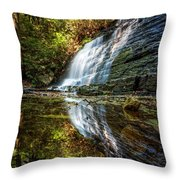 Silky Reflections Throw Pillow
