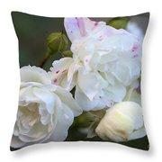 Silky Rose 2 Throw Pillow