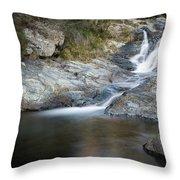 Silky Stream Throw Pillow