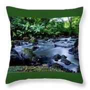 Silky Waters Throw Pillow