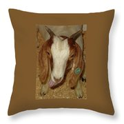 Silly 60 Throw Pillow