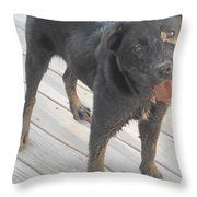 Silly Dog Throw Pillow