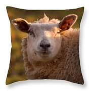 Silly Face Throw Pillow by Angel  Tarantella