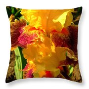 Silly Frilly Dragon Throw Pillow