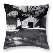 Silo In Black And White Throw Pillow