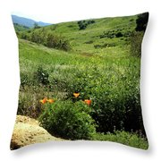 Silver And Green Throw Pillow