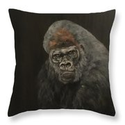Silver Backed Gorilla Throw Pillow