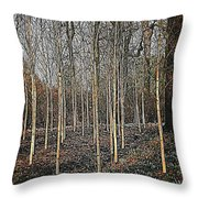 Silver Birch Winter Garden Throw Pillow
