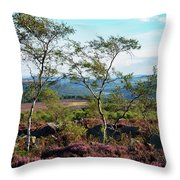 Silver Birch At Surprise View Throw Pillow