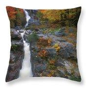 Silver Cascade In Autumn Throw Pillow