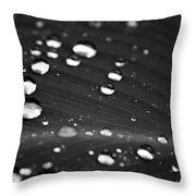 Silver Drops Throw Pillow